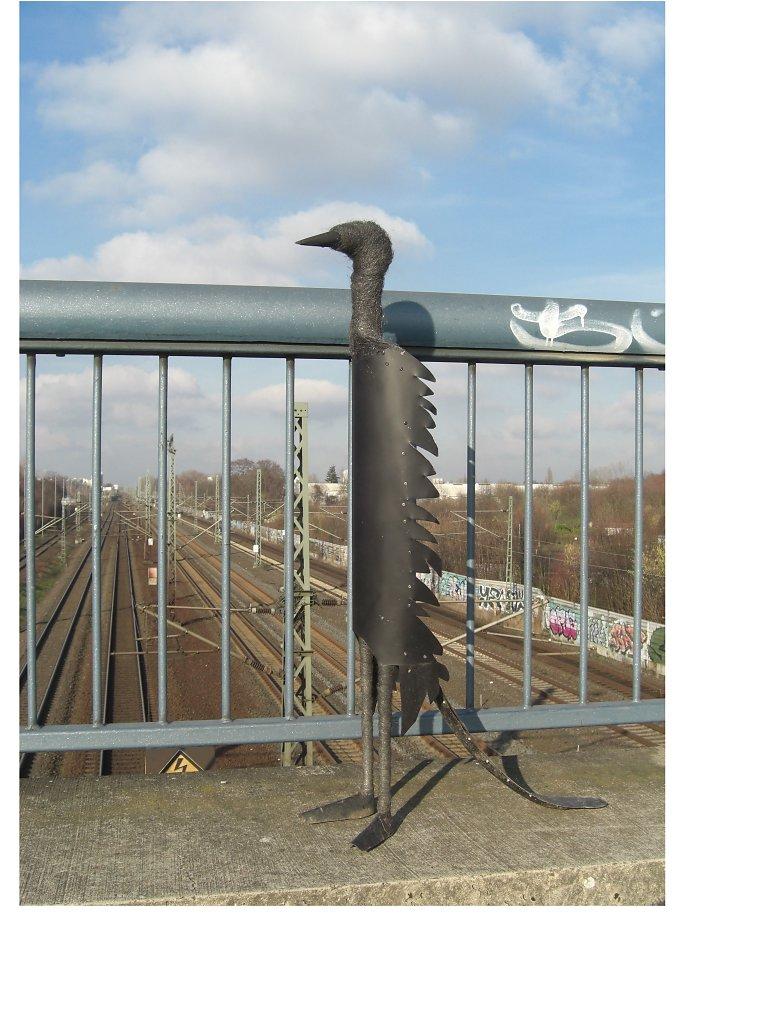 CIMG0789-Vogel-Bahngleise.jpg